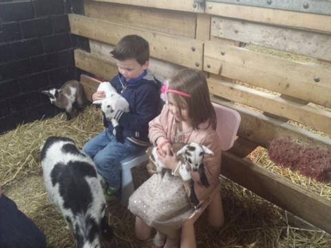 Pasen kinderboerderij.jpg